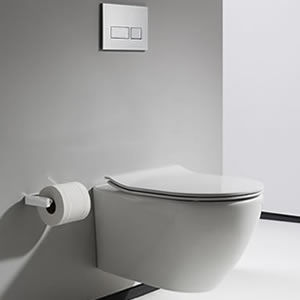 What is the Best Wall Hung Toilet for Me?