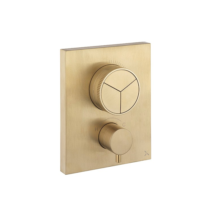 Photo of Crosswater MPRO Brushed Brass Triple Outlet Crossbox Push Shower Valve Cutout