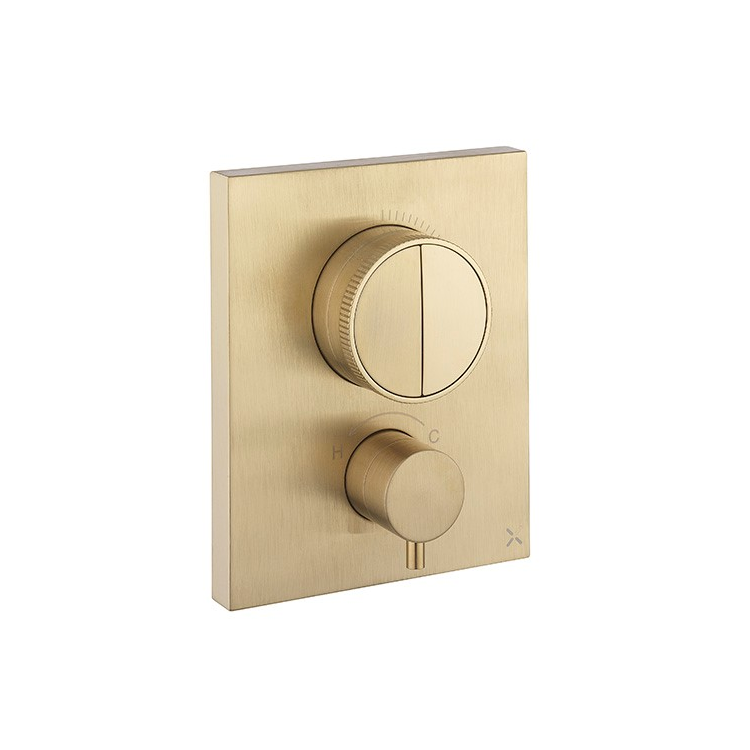 Photo of Crosswater MPRO Brushed Brass Twin Outlet Crossbox Push Shower Valve Cutout