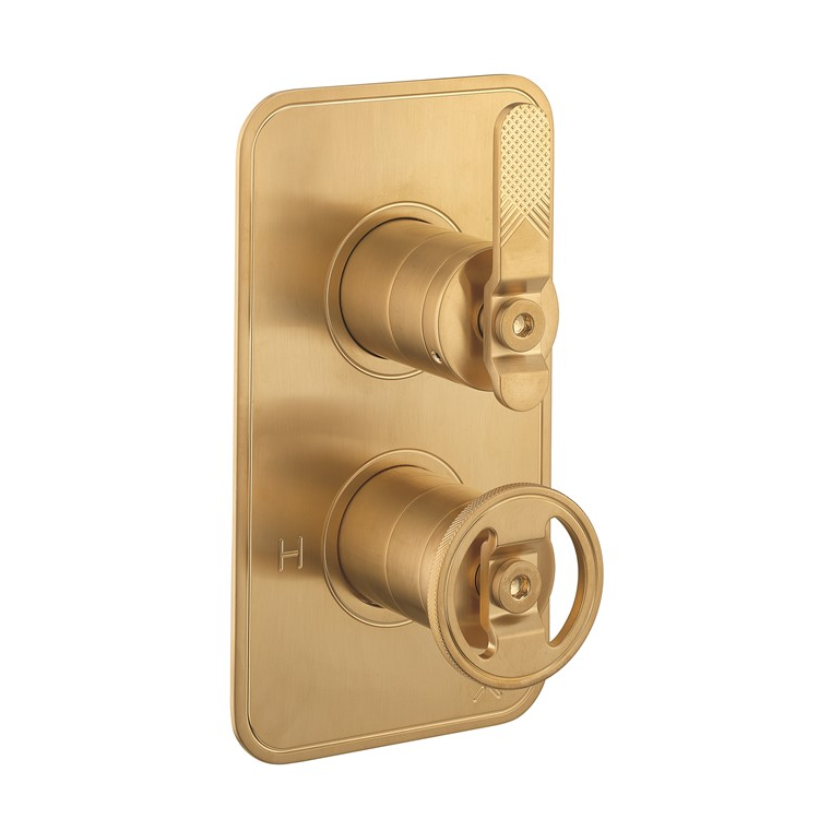 Photo of Crosswater Union Brushed Brass 2 Outlet 2 Handle Concealed Shower Valve Cutout