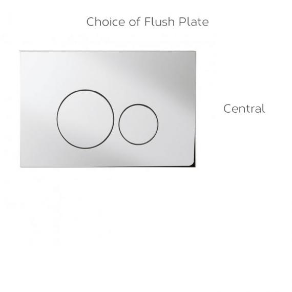 Optional Flush Plate