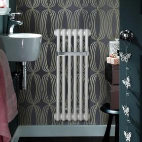 Photo of Zehnder Charleston Bar Traditional Cloakroom Radiator