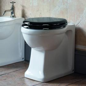 Photo of Arcade Back to Wall Toilet